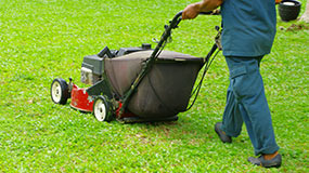 Basic Lawn Care Services in Houston - Lawns and Sprinklers USA