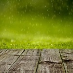 3 Tips To Prevent Yard Flooding